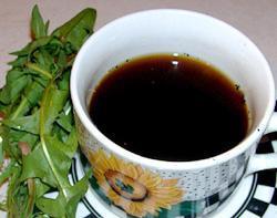 Кофе из одуванчика: как приготовить