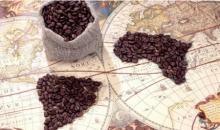 Какие сорта кофе бывают