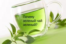 Почему зеленый чай зеленый