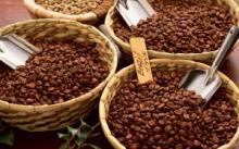 Бразильский кофе: особенности выращивания и конечного продукта