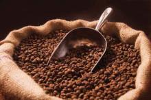 Лучшие сорта кофе в зернах в мире